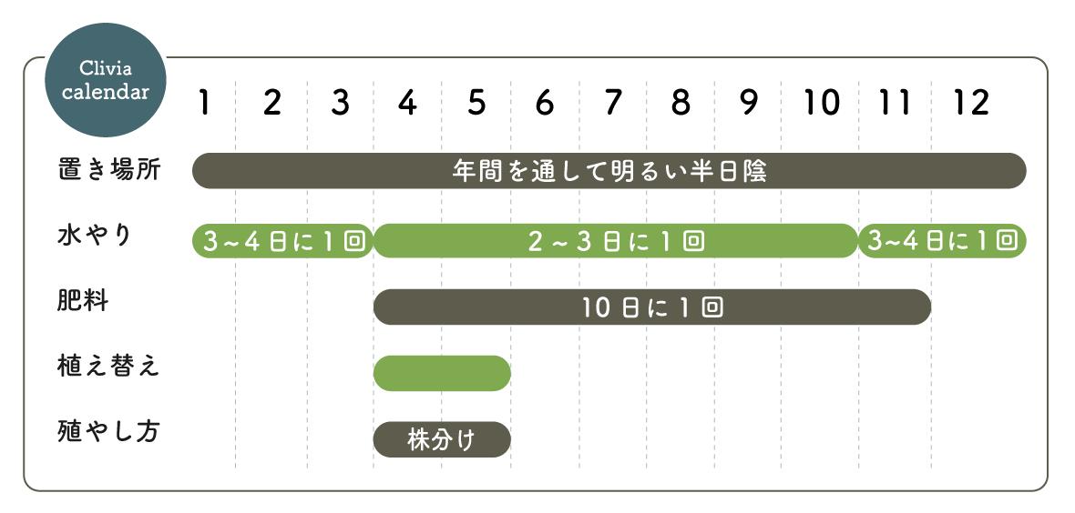 クンシラン 栽培カレンダー