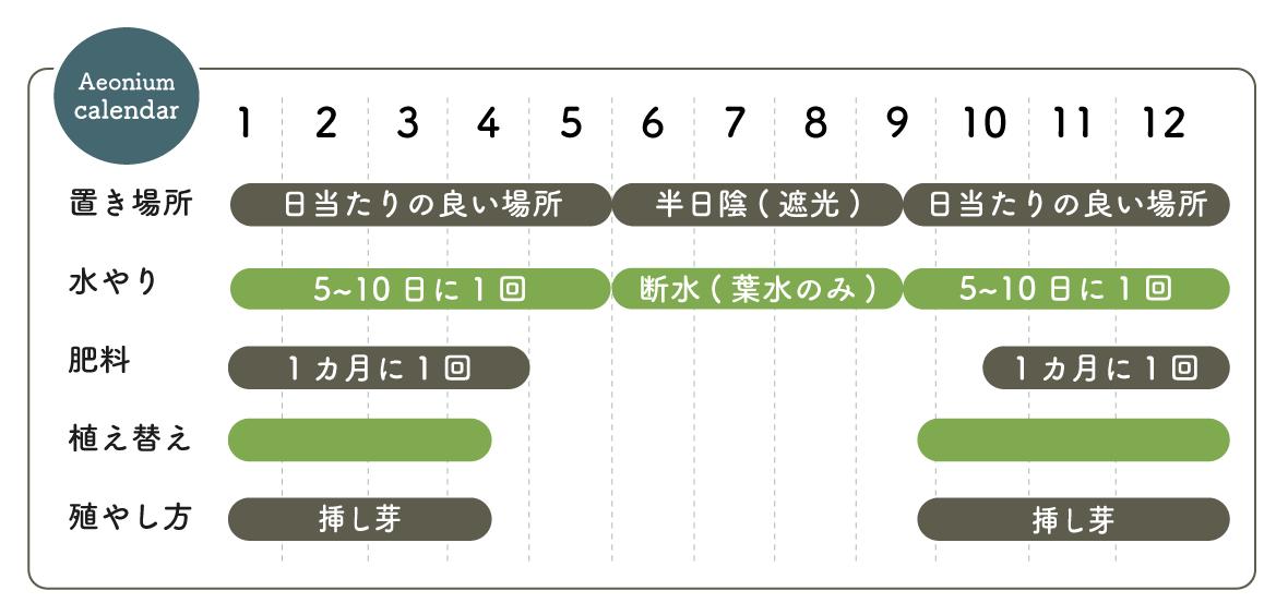 アエオニウム栽培カレンダー