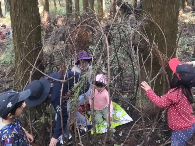 森で遊ぶ人々