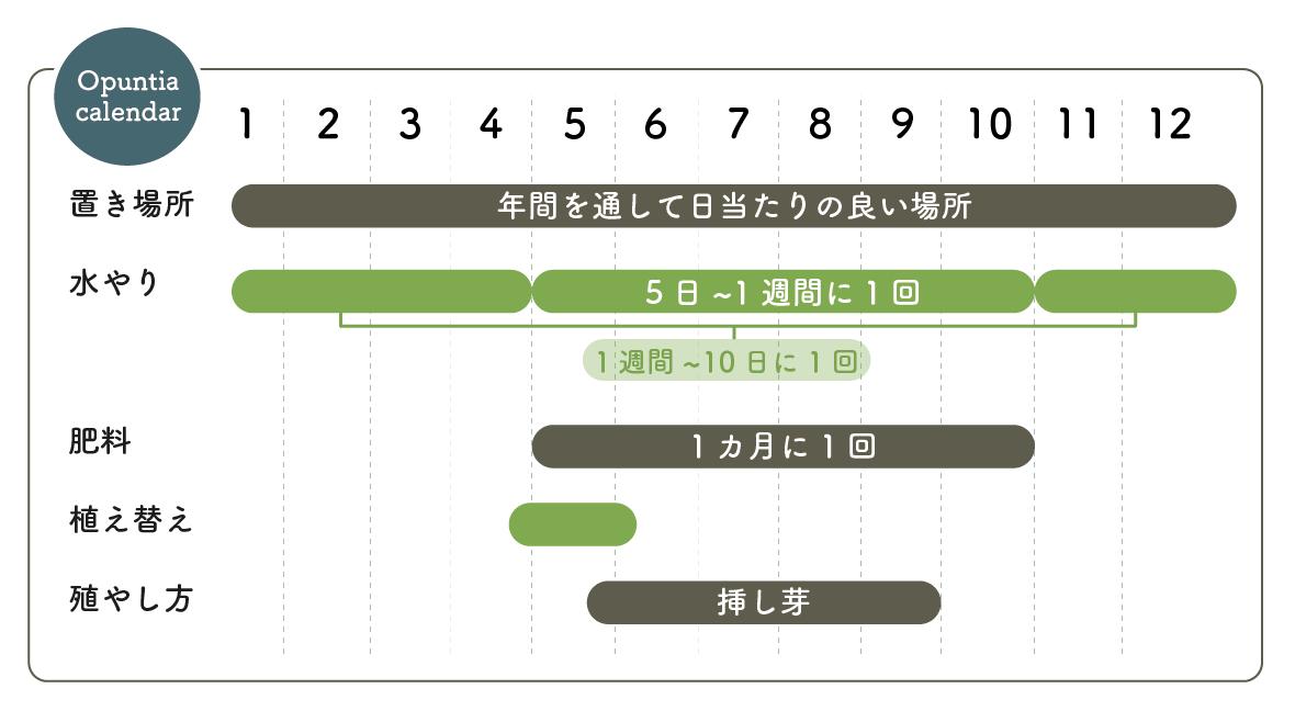オプンチア栽培カレンダー