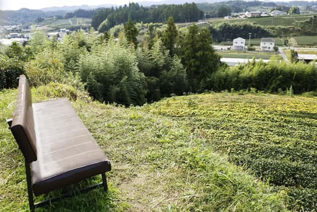 高台のベンチ