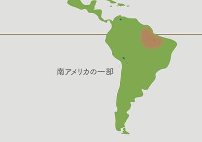 ビカクシダ原産地 地図