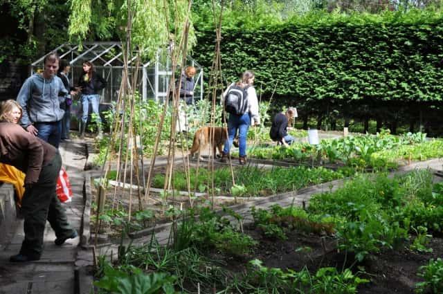 オランダの市民農園