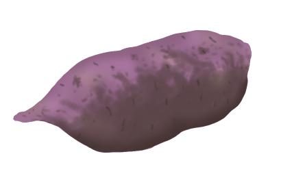 黒あざ病におかされたサツマイモ