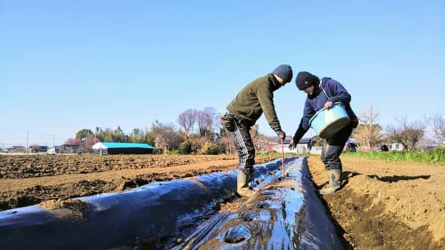久松農園研修