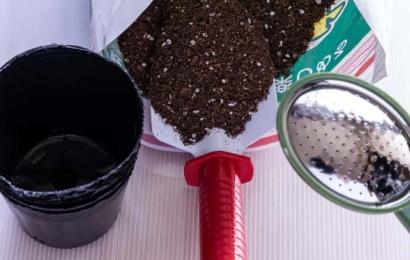ビニールポットと培養土とじょうろ